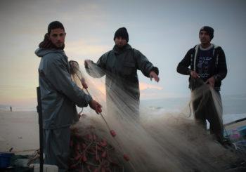 Comunicado: 50 años de ocupación israelí y 10 años de bloque sobre Gaza