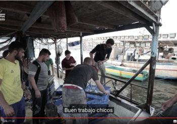 Seis millas mar adentro: un día en la vida de los pescadores de Gaza